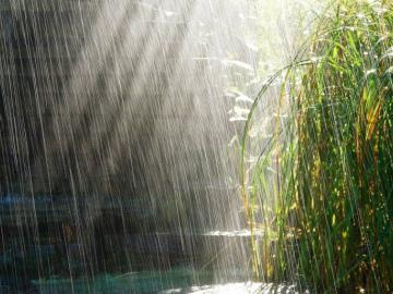 2019年下雨天的心情说说 淋了一场雨,看清楚了这个世界