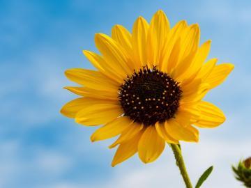 尽情的享受大自然馈赠的美好心情说说