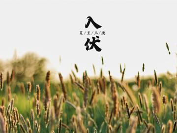 夏日三伏天高温天气问候祝福语