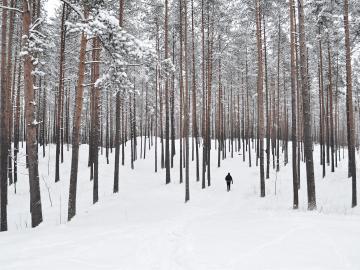 今日是立冬的祝福说说