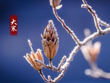 二十四节气最后一个大寒就要来了的祝福说说
