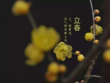 今天是二十四节气之首立春日,愿你幸福的花开在脸上