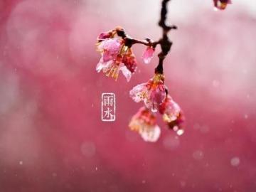 二十四节气雨水快乐温馨祝福说说