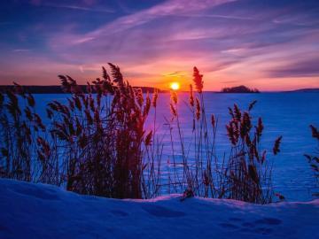天气越来越冷,寒潮来临的祝福说说