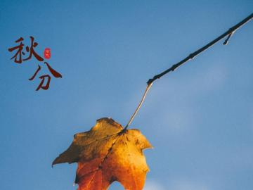 关于秋分时节的经典农谚说说