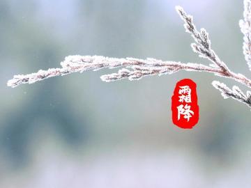 二十四节气之霜降文案