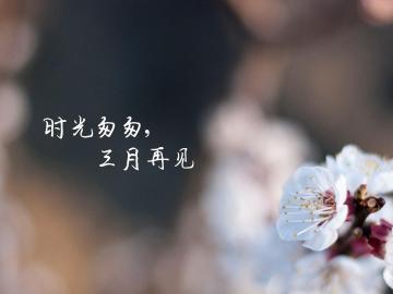 告别阳春三月,迎接四月的唯美说说