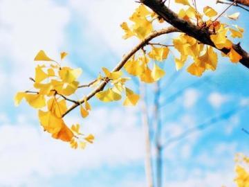 秋分时节经典祝福说说