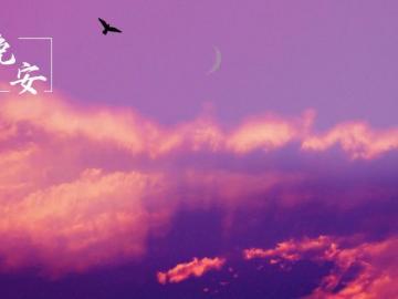 情人一句暖心晚安心语 人生没有彩排,好好珍惜现在