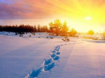 描写二十四节气大雪的唯美古诗
