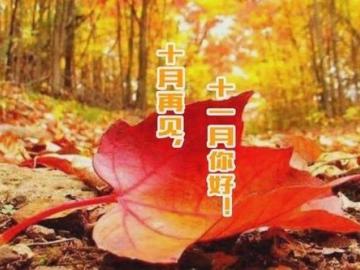 十月再见,十一月你好的阳光正能量励志句子