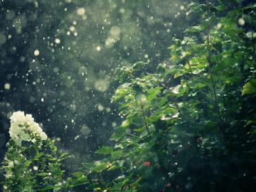 下雨天很丧的心情说说 孤独成狗都不知道和谁说