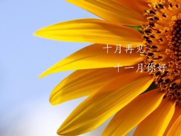 十月尾声,十一月伊始的正能量励志说说