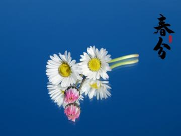 春分时节,邂逅最美的春分古诗词