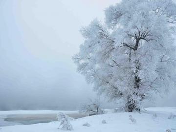 群发的立冬祝福语大全
