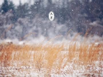 大寒时节,绝美诗词自销魂