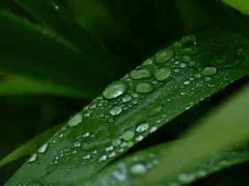 下雨天无助的心情说说:伸手怕犯错,缩手怕错过