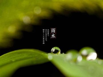 二十四节气雨水暖心祝福的节日说说