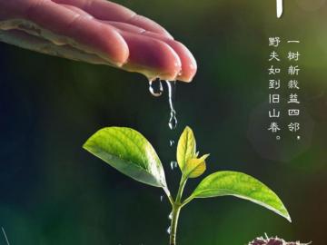 """植树节的创意文案  让阳光为地球充""""植"""""""