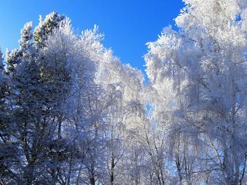 二十四节气大雪注意保暖的祝福语