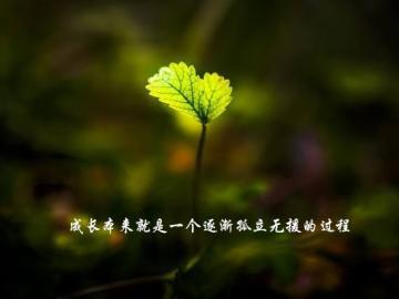 那些成长的经典说说 成长本来就是一个逐渐孤立无援的过程