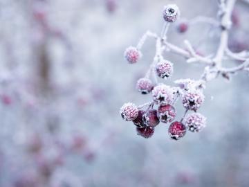 霜降时节微信朋友圈最新早安说说