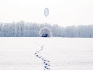 大雪随着寒冬来了的祝福说说
