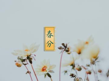 春分时节郊游踏青的祝福说说  愿你春风和煦,不负归期
