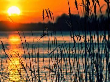 十一月莫辜负时光的唯美说说:愿温柔相待,阳光相伴