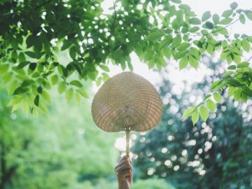 大暑时节的温馨祝福语   一年之中四季更,大暑到来三伏临