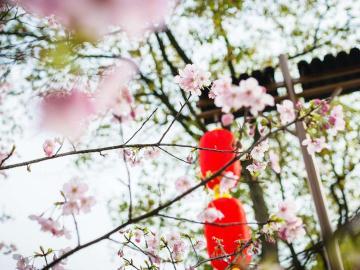 二十四节气立春,春的伊始节日说说