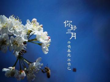 告别二月,迎接三月唯美说说 期待春暖花开的三月