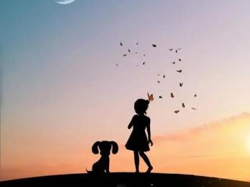 悲从心起的伤感说说,深夜勿看,容易哭