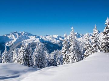 抖音上适合下雪天发的唯美句子
