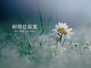 心累心疼靠自己的励志说说 送给泪点低的人