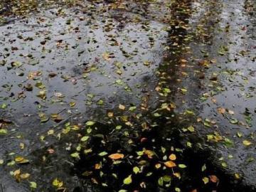 形容秋雨绵绵的唯美句子