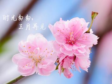 告别三月,迎接四月的短小精悍励志说说