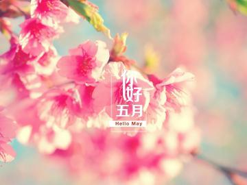 四月即将过去,五月你好的唯美心情说说
