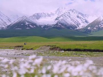 新疆不只有棉花说说 新疆不只有好棉花,宝藏美食也顶呱呱