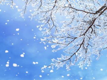 二十四节气大雪的祝福语