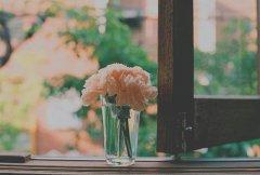 最傷心欲絕的句子唯美說說心情短語