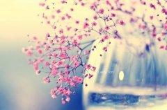 伤感失落时对自己说的晚安心语励志的话 学习是苦根上长出来的甜果