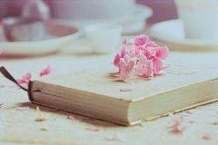 励志有关努力学习的诗句古诗大全