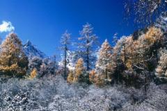 2018关于立冬的心情短语说说 立冬说说大全心情短语