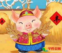 2019年是什么年 关于猪年的新年祝福语说说大全