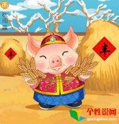 2019关于猪年的企业祝福语有哪些