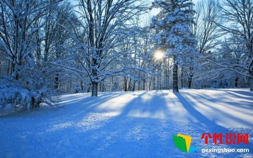 关于冬天里下雪的说说 关于冬天里下雪的短语句子