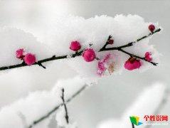 关于冬天下雪唯美说说 描写冬天下雪唯美句子
